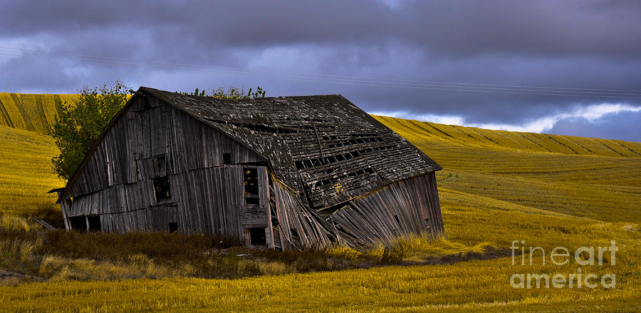 Pullman Photograph - Old Barn by Camille Lyver