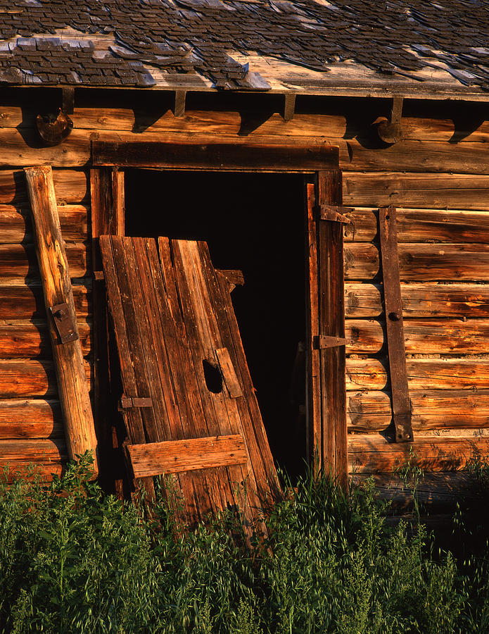 North America Photograph - Old Barn Door by Mike Norton