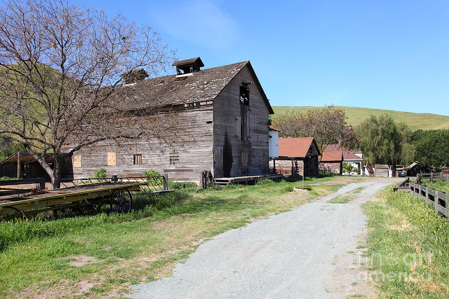 Bayarea Photograph - Old Barn In Antioch California 5d22271 by Wingsdomain Art and Photography