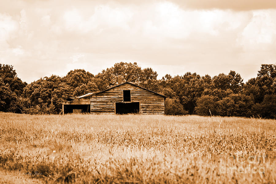 Monochrome Photograph Photograph - Old Barn Staying Silent  by Jinx Farmer
