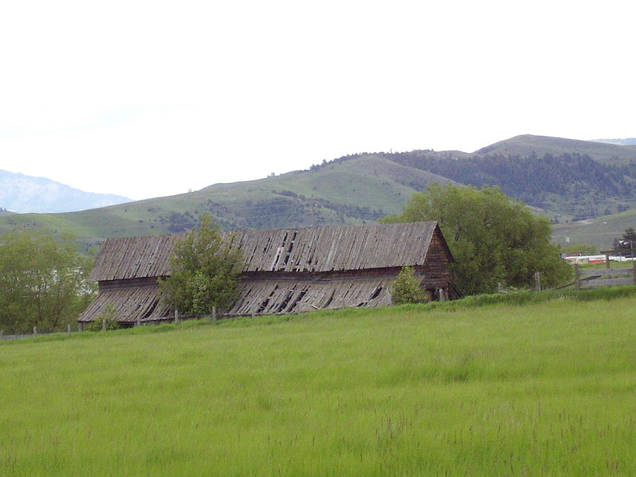 Landscape Photograph - Old Barn by Yvette Pichette
