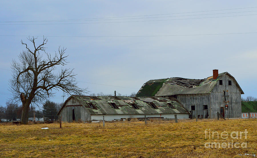 Old Barns Photograph - Old Barns In The Heartland by Alys Caviness-Gober