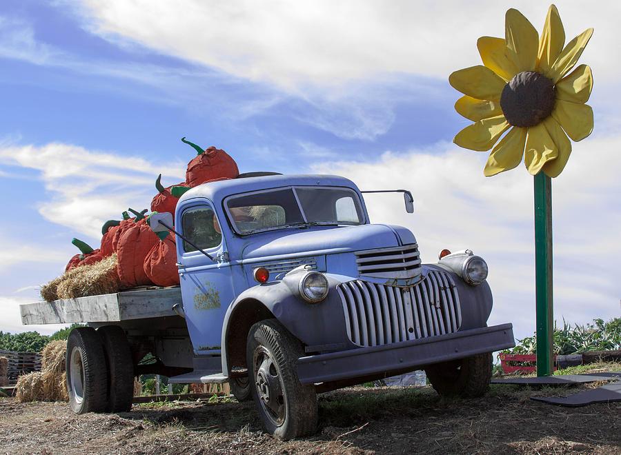 Old Blue Farm Truck Photograph by Patrice Zinck