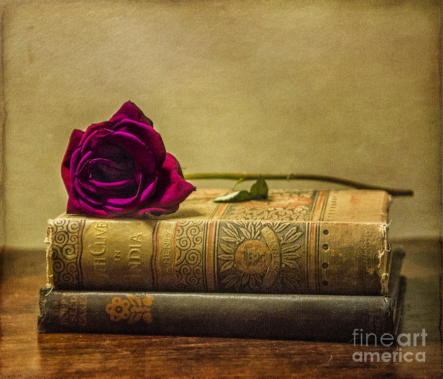 Old Book Love Photograph By Terry Rowe