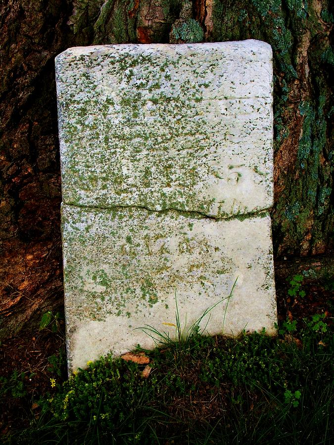 Grave Photograph - Old Broken Marker by Mark Malitz