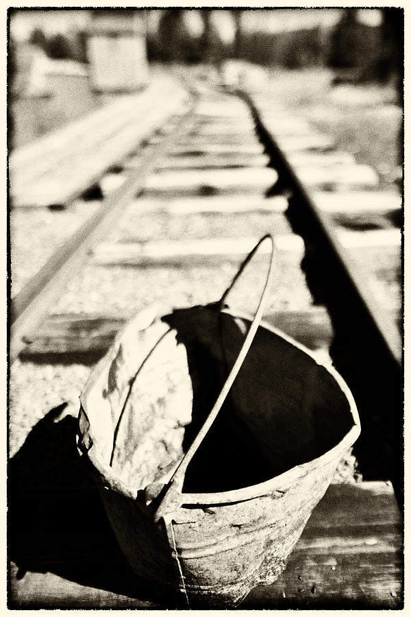 Alberta Photograph - Old Bucket by Craig Brown