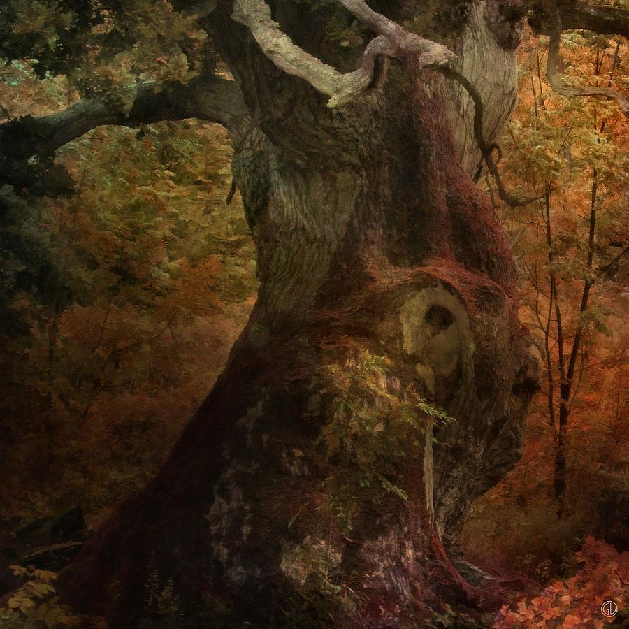 Nature Digital Art - Old But Still Alive by Gun Legler