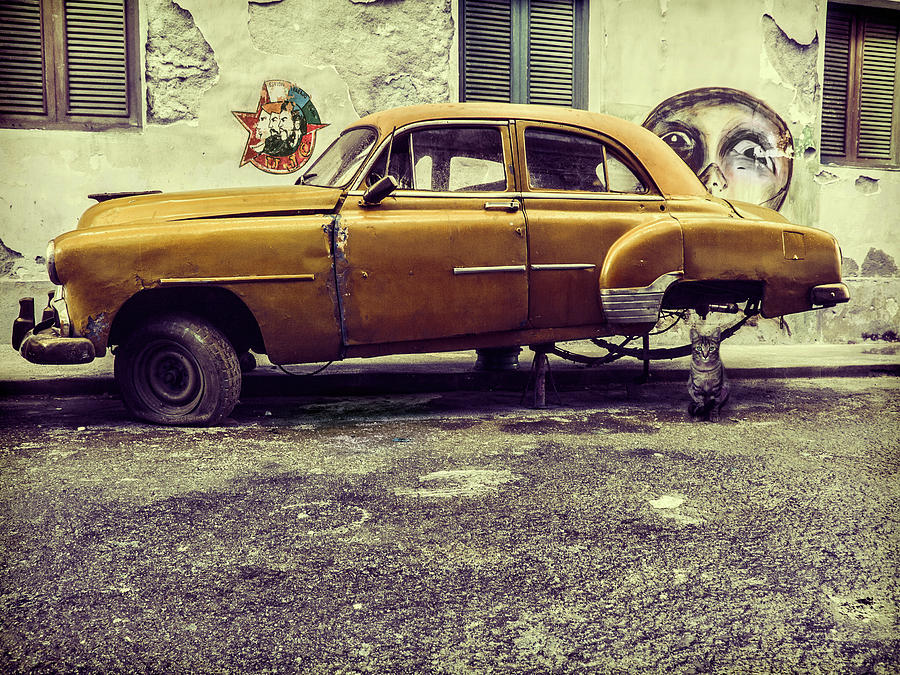 Street Photograph - Old Car/cat by Svetlin Yosifov