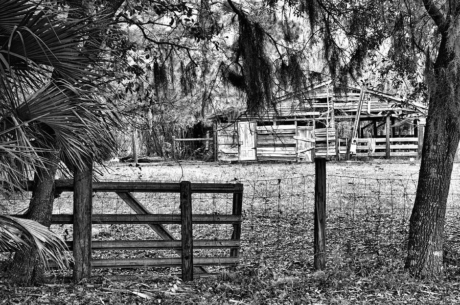 Barn Photograph - Old Chisolm Island Barn by Scott Hansen