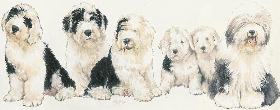 Old English Sheepdog Puppies Mixed Media By Barbara Keith