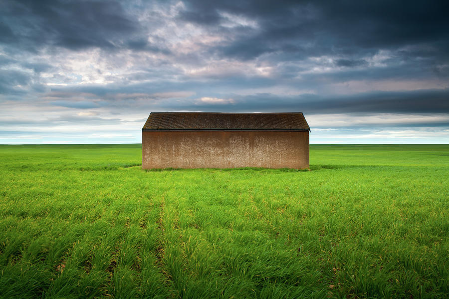 Old Farm Shed In Green Wheat Field Photograph by Robert Lang Photography