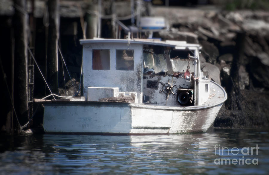 Cape Cod Photography Photograph - Old Fishing Boat by Loriannah Hespe