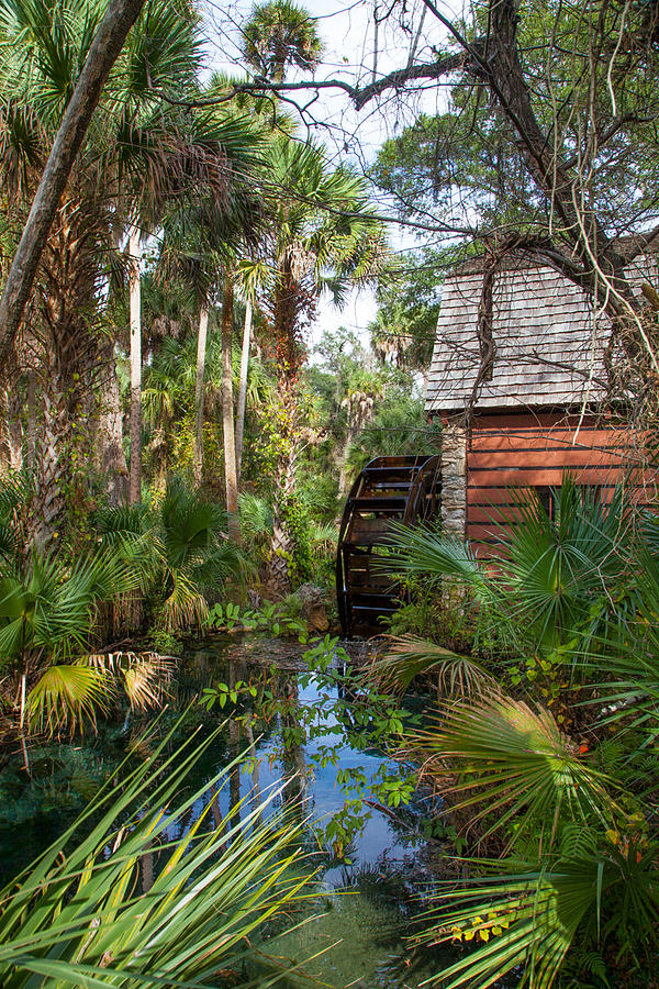 Florida Photograph - Old Florida Watermill I by W Chris Fooshee