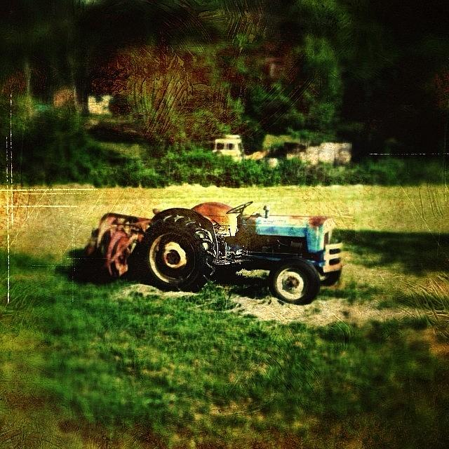 Farm Photograph - Old Ford Tractor by Paul Cutright