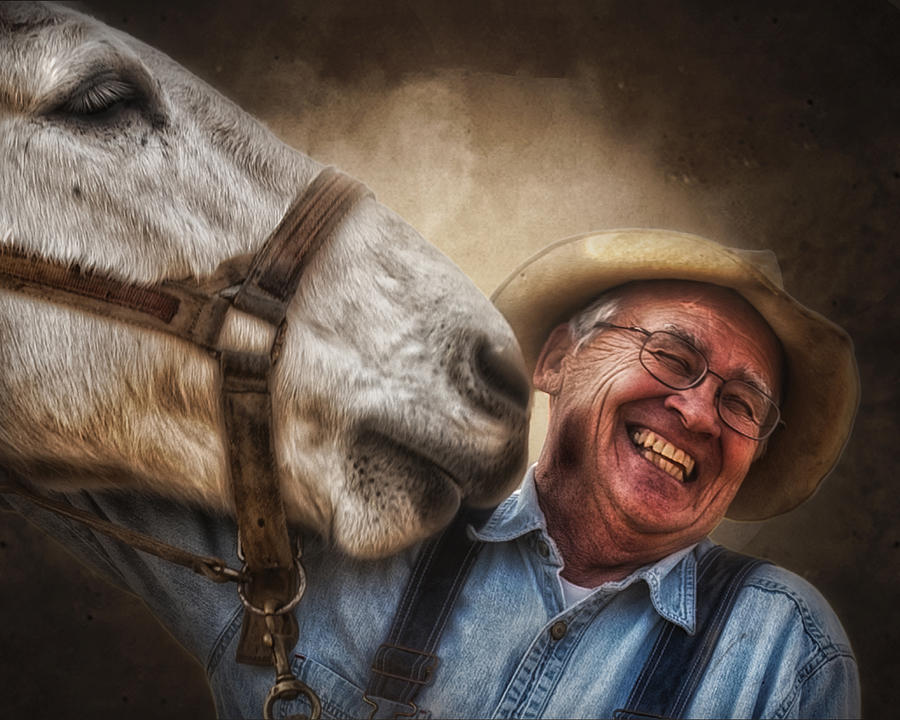 Mule Photograph - Old Friends by Ron  McGinnis