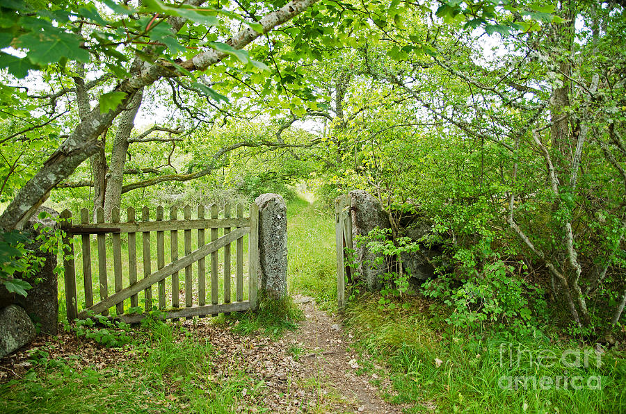 Age Photograph - Old Garden Gate by Kennerth and Birgitta Kullman