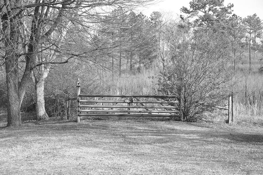 Old Gate Photograph
