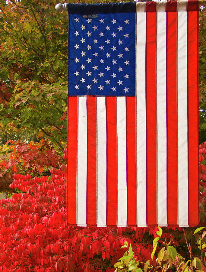 Ron Roberts Photograph - Old Glory by Ron Roberts