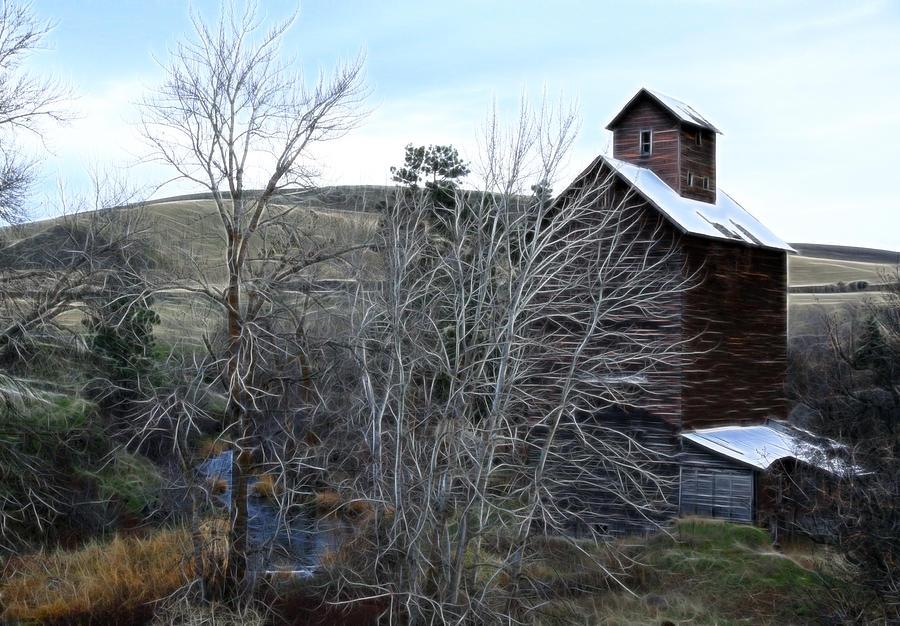 Cabin Photograph - Old Grain Barn by Steve McKinzie