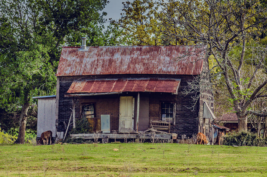 Farm House Photograph - Old Haus by Kelly Kitchens