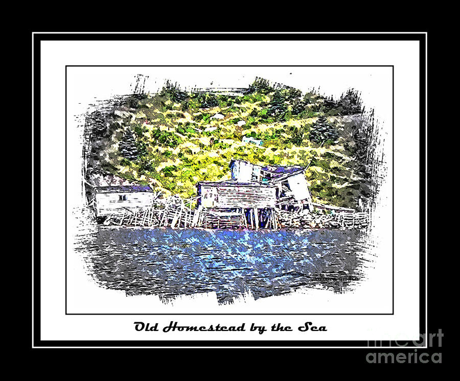 Old Homestead Photograph - Old Homestead By The Sea by Barbara Griffin