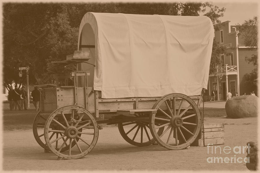 Old Horse Carriage Photograph By Sophie Vigneault