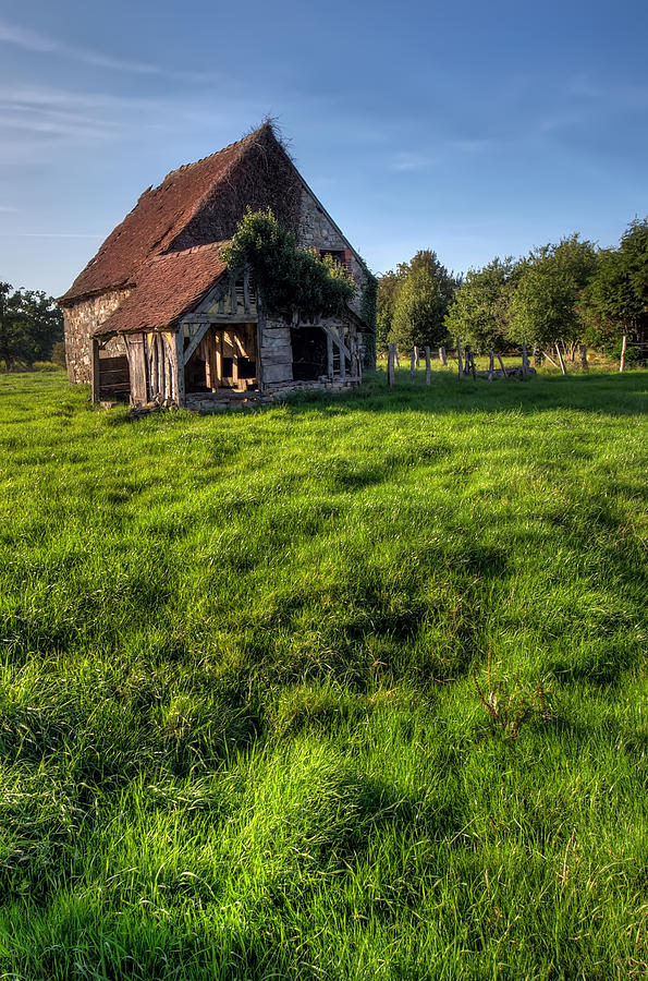 Ancient Photograph - Old House In Summer  by Ioan Panaite
