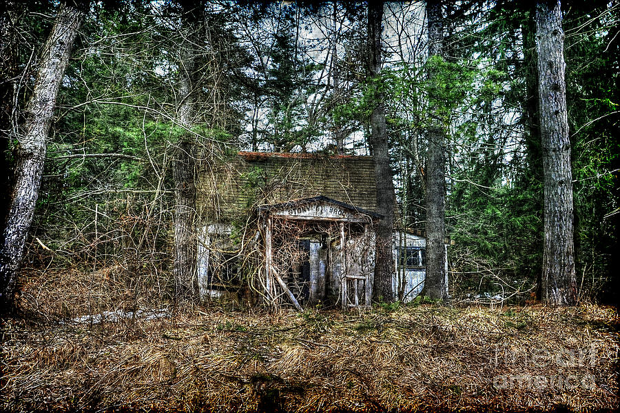 Old House Photograph - Old House With Overgrown Brush by Dan Friend
