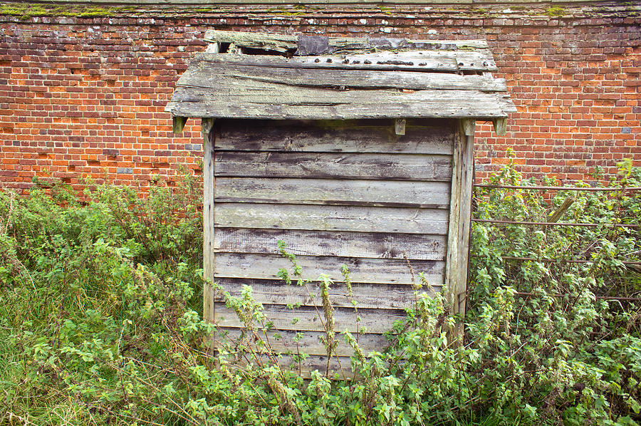 Abandoned Photograph - Old Hut by Tom Gowanlock