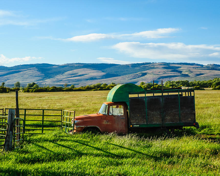 Countryside Photograph - Old International Livestock Truck by Steve G Bisig