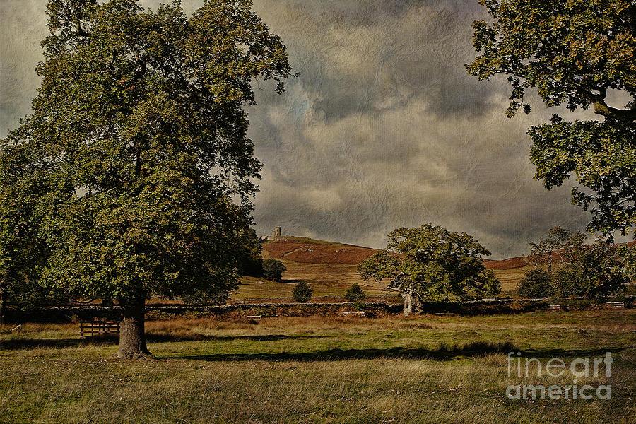Bradgate Park Photograph - Old John Bradgate Park Leicestershire by John Edwards