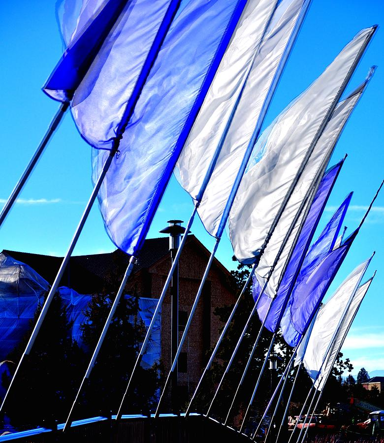 Old Mill Flags 21743 Photograph