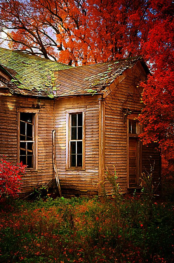 Schools Photograph - Old One Room School House In Autumn by Julie Dant