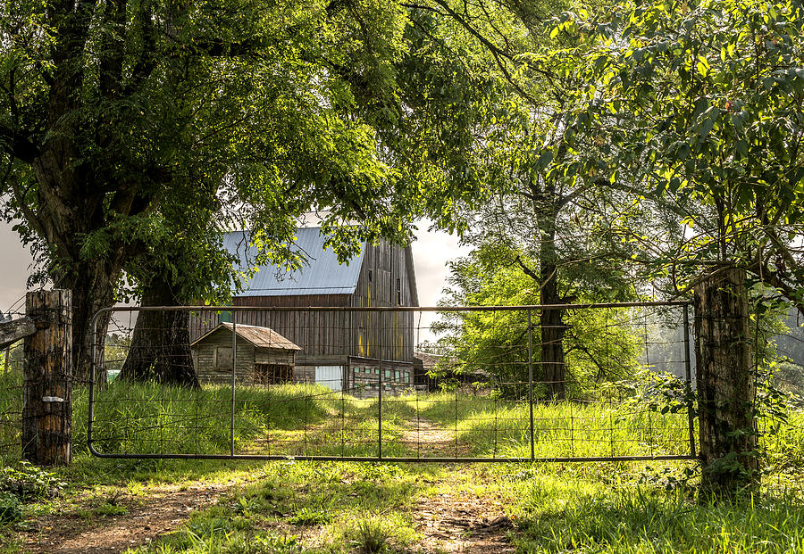 Old Orchard Barn Photograph By Lorna Scott