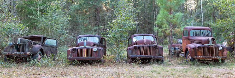 Color Image Photograph - Old Rusty Cars And Trucks On Route 319 by Panoramic Images