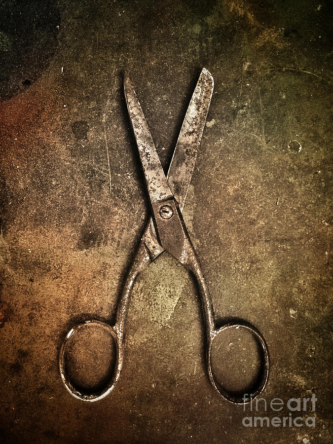 Scissors Photograph - Old Scissors by Carlos Caetano