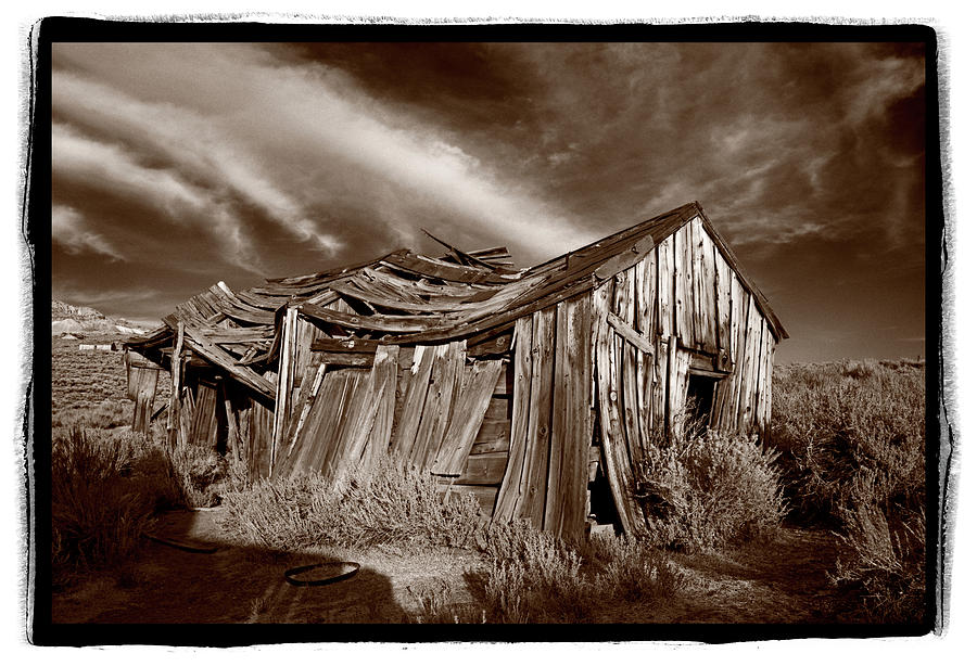 Black Photograph - Old Shack Bodie Ghost Town by Steve Gadomski