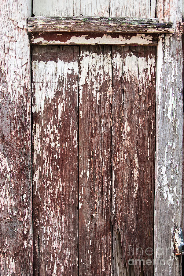 Old shed door by Fran Woods