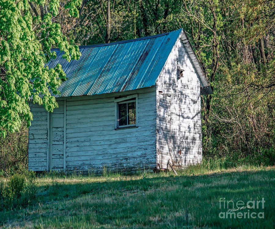 Barns Photograph - Old Shed by Timothy Clinch