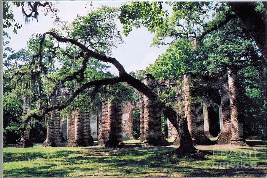 South Carolina Photograph - Old Sheldon Church Ruins by Debbie Bailey