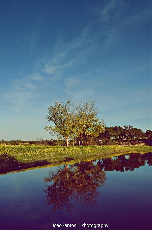 Landscape Photograph - Old Sky by Joao Santos