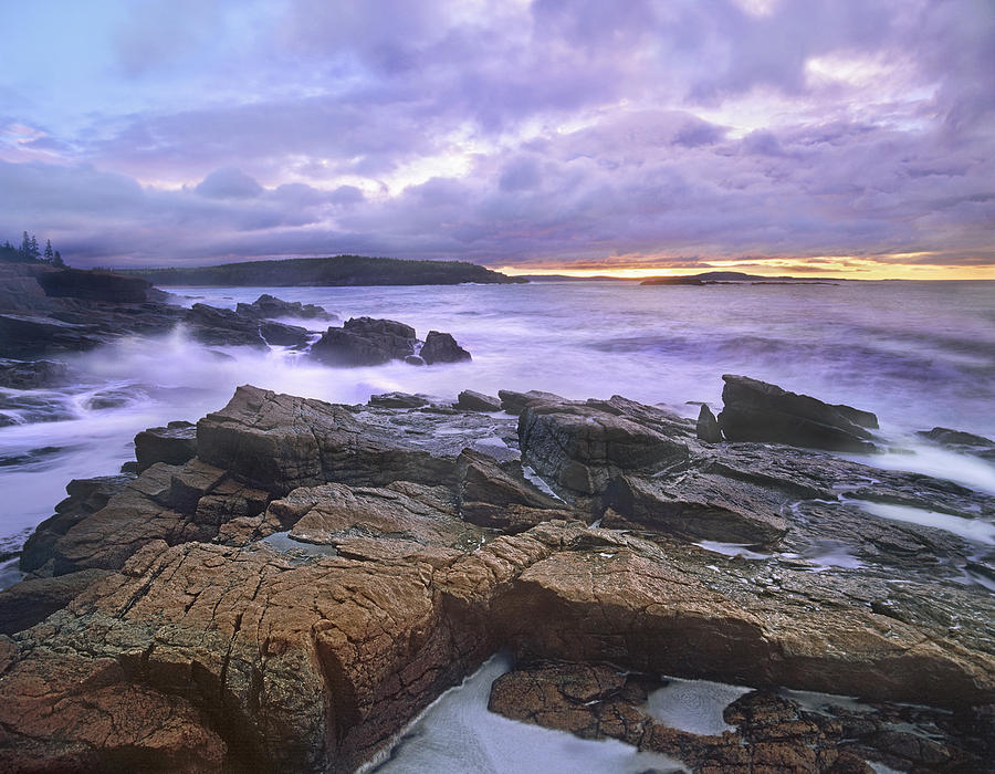 Old Soaker Acadia Maine Photograph by Tim Fitzharris