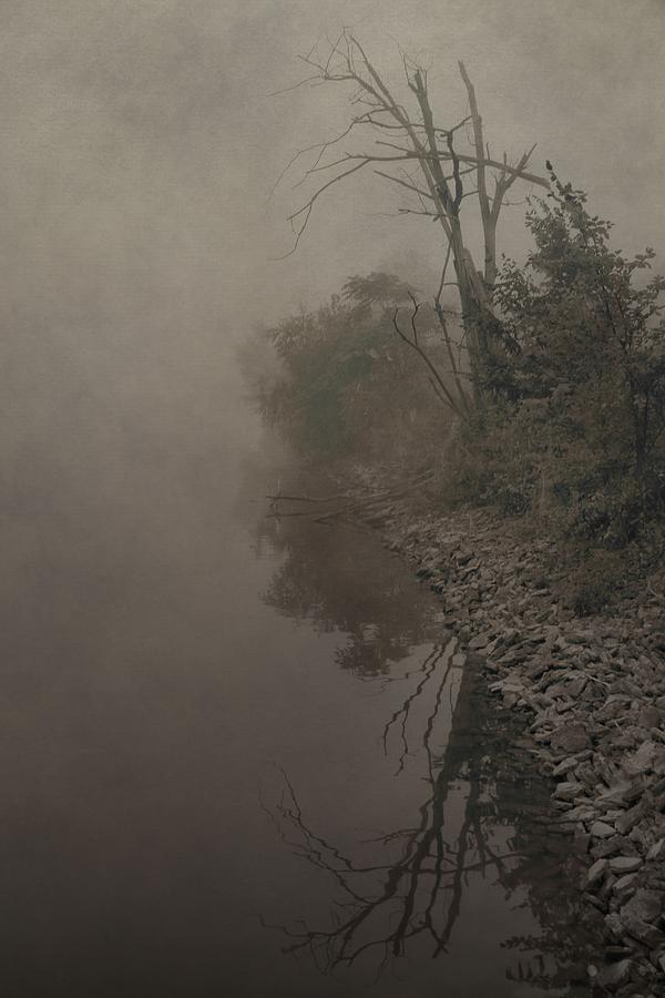 Fog Photograph - Old Soul by Dan Sproul