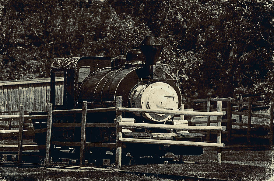 Engine Photograph - Old Steam Locomotive  by Maria Angelica Maira