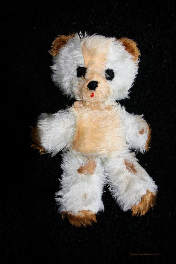 Old Teddy Bear Photograph - Old Teddy Bear Pepi by Leena Pekkalainen