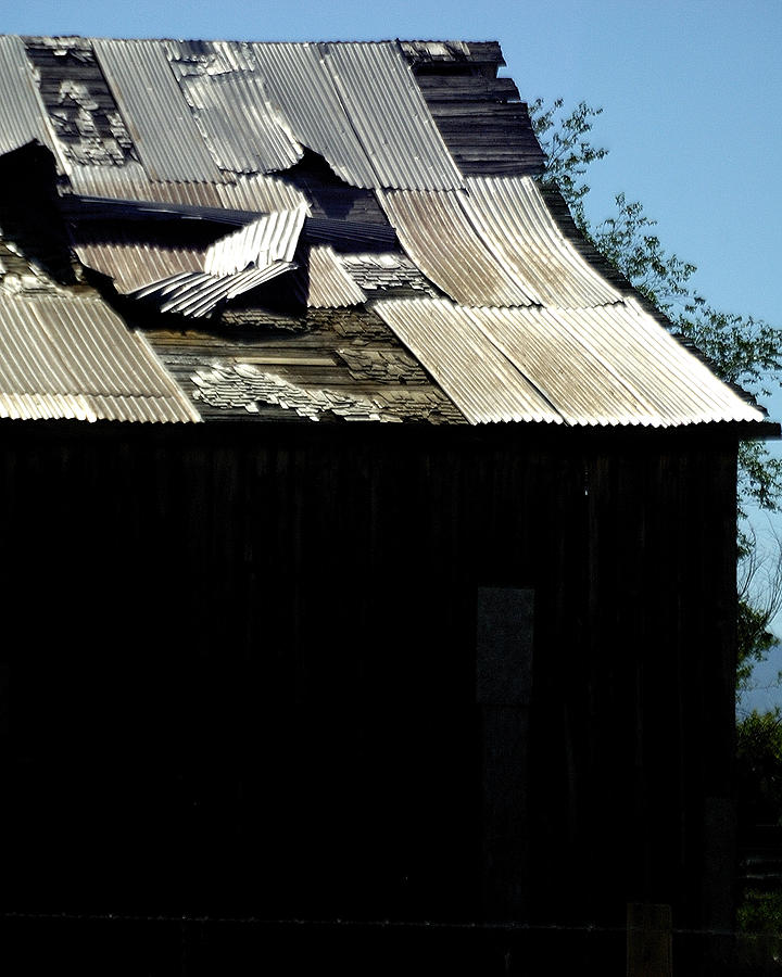 Old Tin Roof 12788 Photograph