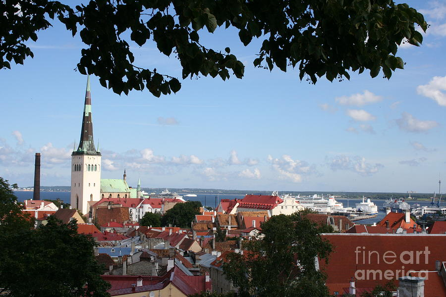 Old Town Photograph - Old Town And Harbor - Tallinn by Christiane Schulze Art And Photography