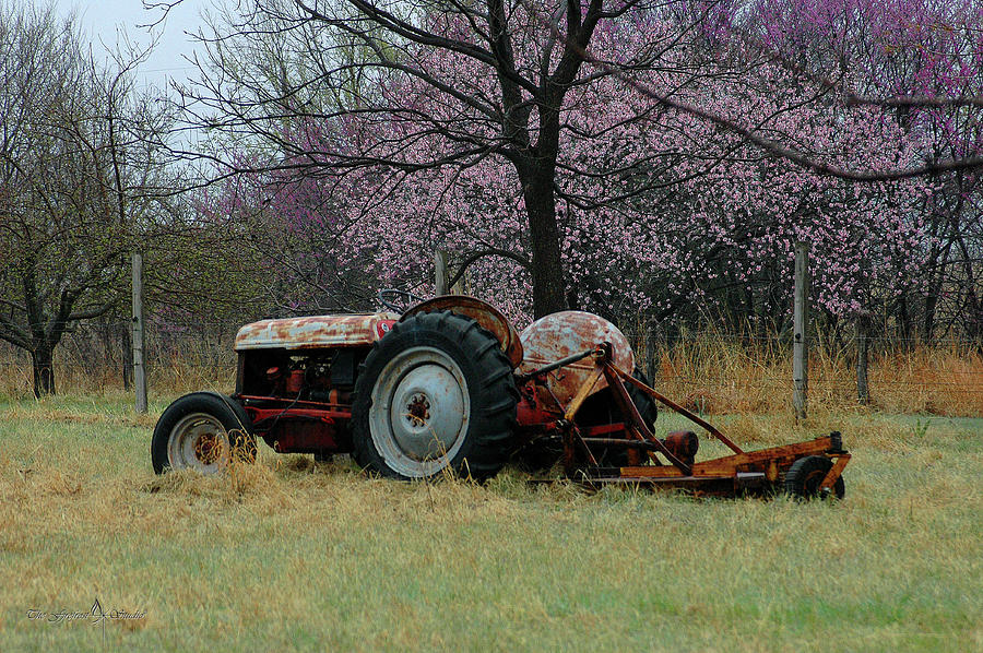 Tractor Photograph - Old Tractor And Redbuds by Jill Westbrook