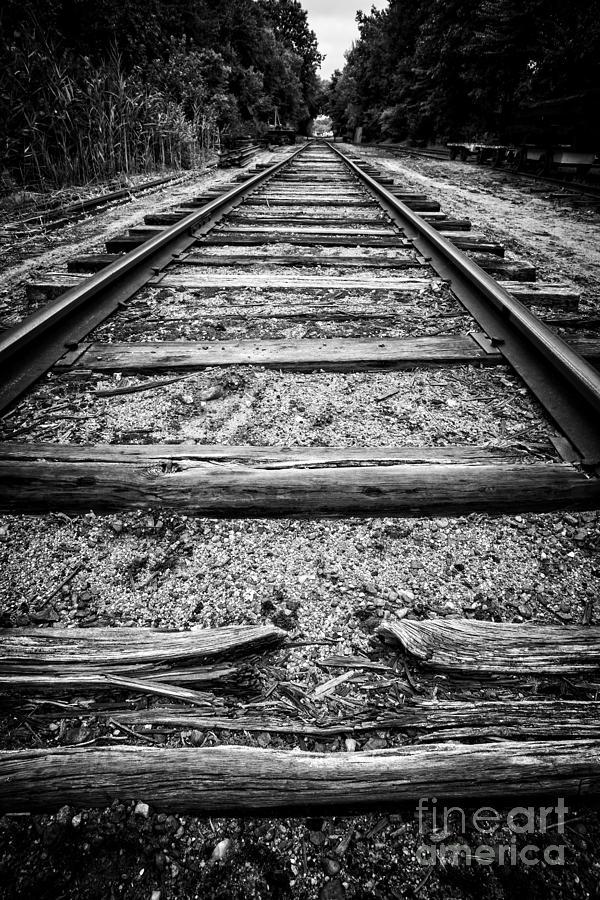Standard Photograph - Old Train Tracks by Edward Fielding