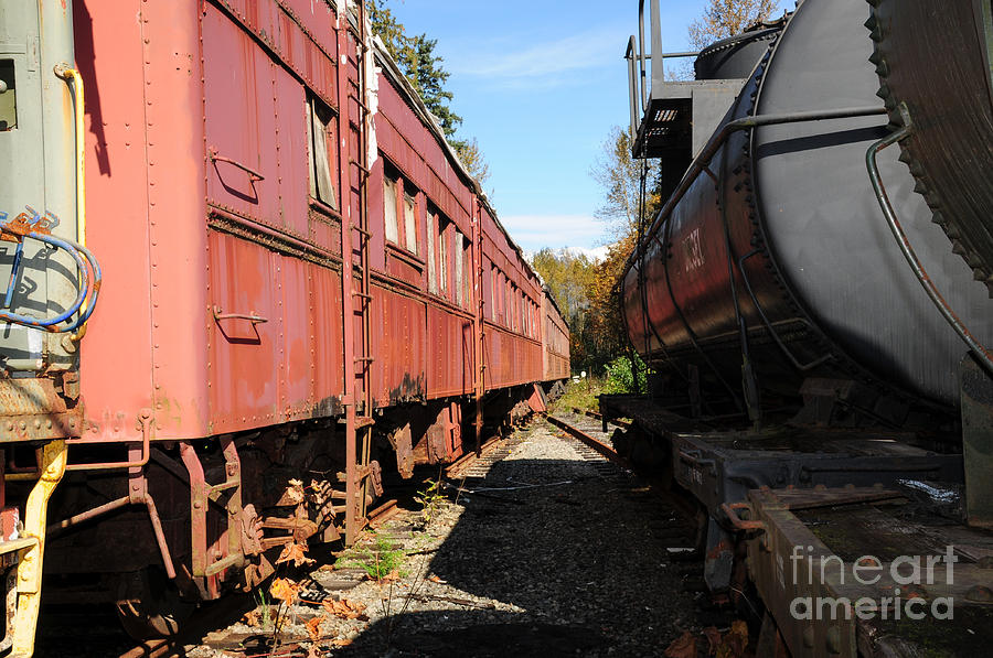 British Columbia Photograph - Old Train Wagons At Ease by Malu Couttolenc
